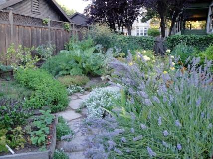 A backyard homestead in Palo Alto, California